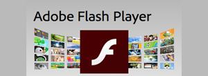Adobe Flash Player graphic
