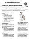 Protect Your Pets from Wildfire Smoke Cover